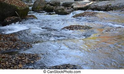 Slowly brook flowing among a fallen leaves on rocks