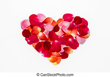 Valentine's day rose petals heart on white background