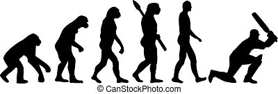 Cricket Evolution