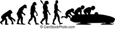 Bobsleigh Evolution