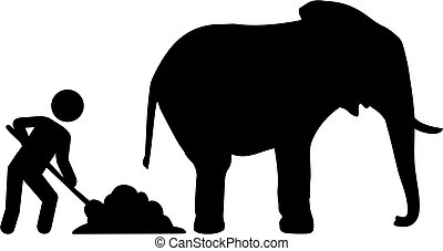 Worker removed elephant dung