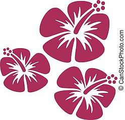 Hibiscus triple icons