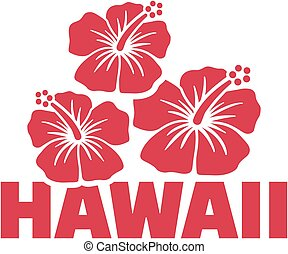 Hawaii word with hibiscus flowers