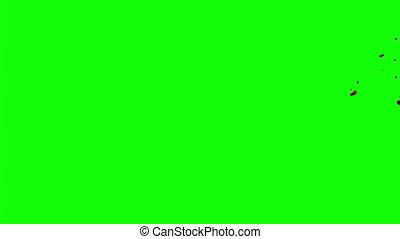 Hd Blood Burst Slow Motion (Green Screen) 89