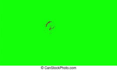 Hd Blood Burst Slow Motion (Green Screen) 109