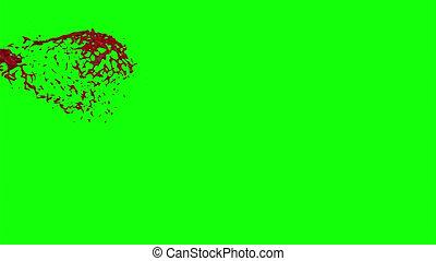 Hd Blood Burst Slow Motion (Green Screen) 11