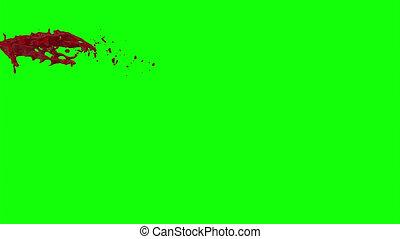 Hd Blood Burst Slow Motion (Green Screen) 33 - Nice HD slow...