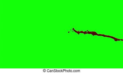 Blood Burst Slow Motion (Green Screen) 70 - Nice HD slow...