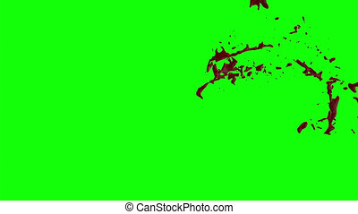 Hd Blood Burst Slow Motion (Green Screen) 65 - Nice HD slow...