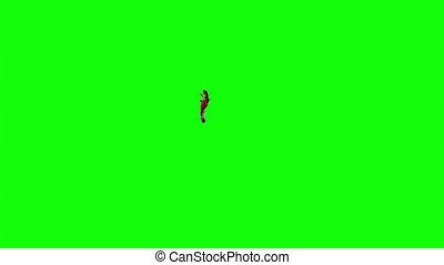 Blood Burst Slow Motion (Green Screen) 101 - Nice HD slow...