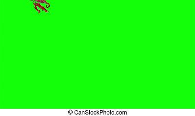 Blood Burst Slow Motion (Green Screen) 80 - Nice HD slow...