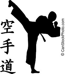 Karate silhouette with signs