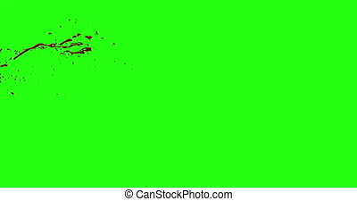 Blood Burst Motion Blur (Green Screen) 50 - Nice and real 4K...
