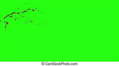 4k Blood Burst Motion Blur (Green Screen) 40 - Nice and real...