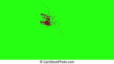 Blood Burst Motion Blur (Green Screen) 150 - Nice and real...