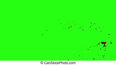 4k Blood Burst Motion Blur (Green Screen) 68 - Nice and real...