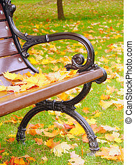 Park bench in autumn closeup