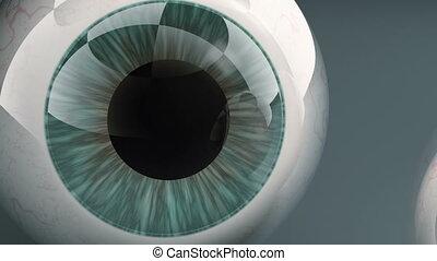 Pair of human eye