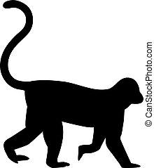Monkey silhouette walking