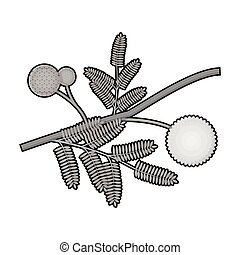 Yellow mimosa flower icon in monochrome style isolated on...