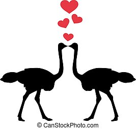Ostriches in love with hearts