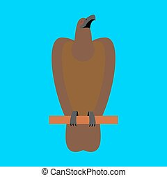 Hawk isolated. Golden eagle on blue background. Big strong...