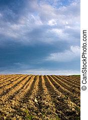 Ploughed Agricultural Landscape
