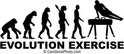 Evolution exercise pommel horse