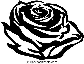 Rose flower outline