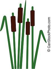 Reed symbol