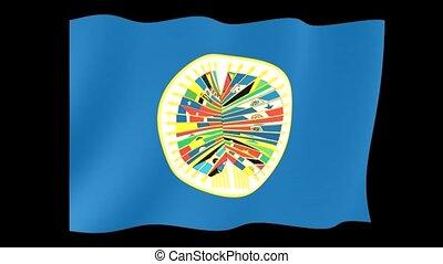 Organization-of-American-States flag. Waving