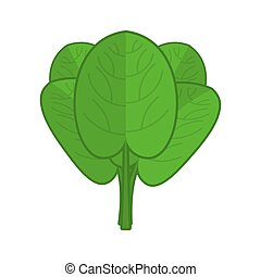 Spinach isolated. Green leaves on white background