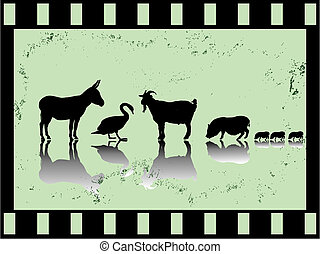 old film strip with farm animals