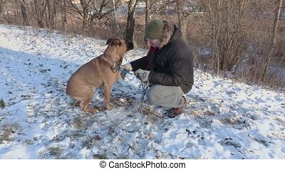 Man teaches the dog to give paw
