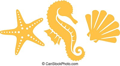 Seahorse with shell and clam