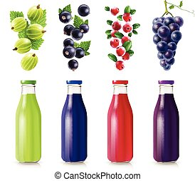 Realistic Bottles With Berry Juice Set
