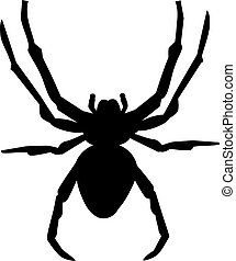Spider silhouette with details