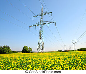 High voltage electricity pylons on meadow with dandelions.