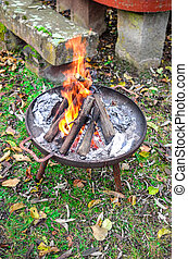 Burning wood in a rusty fire bowl on grass with foliage