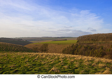 yorkshire wolds landscape - a grassy valley with mixed...