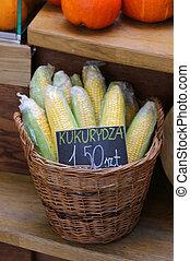 yellow corn for sale in the Polish market - ripe yellow corn...