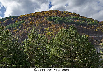 Colorful autumn landscape in the  Balkan mountain