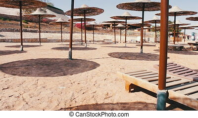 Beach sunshade parasols made of dried straw - Many Parasols...