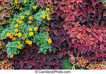 Design of Ground Covers