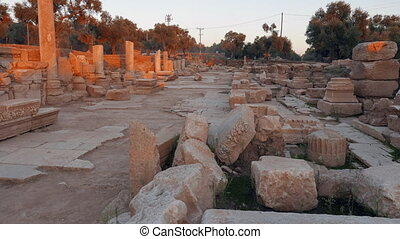 Ruins of ancient roman street with porticos. Nysa, Sultanhisar, Turkey.