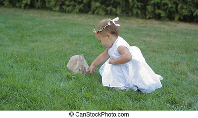 little girl in a white dress stroking the rabbit.