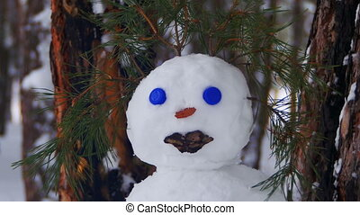 Face of Snowman in a Pine Forest Standing with Snow-covered...