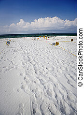 Oil Clean-Up Signs, Gulf Coast - Clean-up signs along a...
