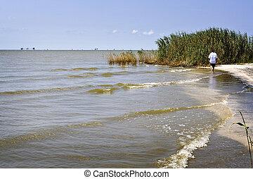 Walking the Beach, Gulf Coast - A single person walks an...