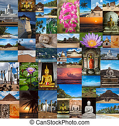 Collage of Sri Lanka images - Collage of images of Sri Lanka...